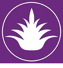 Nanografix logo mezcal